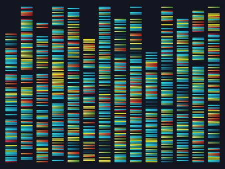 Genomic sequences. Structure of DNA genome