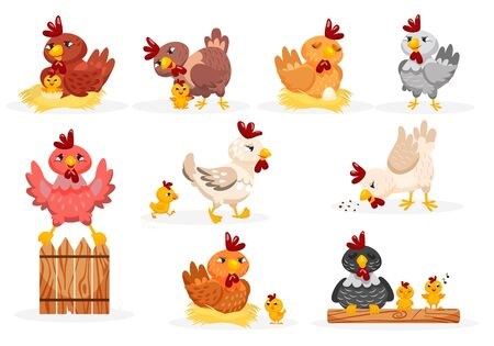Hen and chicks set. Isolated hen bird pecking grain, walking, sitting on fence, hatching eggs in nest and taking care of cartoon baby chickens. Vector poultry farm cute hen and chick animal icons Ilustración de vector