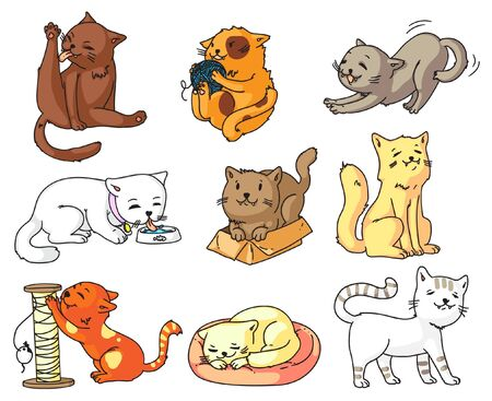 Funny cat. Funny cartoon cat character set isolated on white background. Cute sleeping, standing, walking, sitting, playing, dinking, stretching, sharpening claw. Domestic animal vector illustration