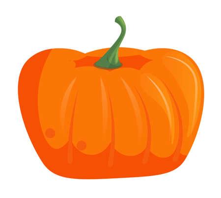 Single pumpkin head isolated on white background Vektorové ilustrace