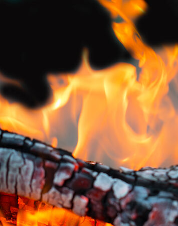 flame fire on coals photo