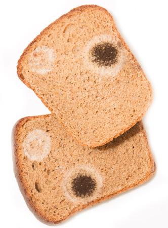 bread mold: black mold on bread Stock Photo