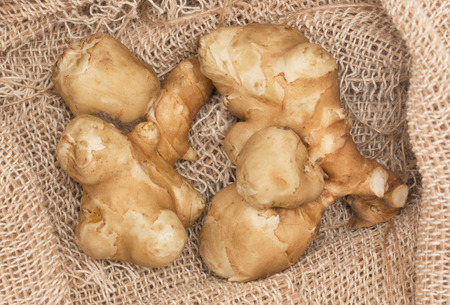 jerusalem artichoke: Jerusalem artichoke tubers on sacking Stock Photo