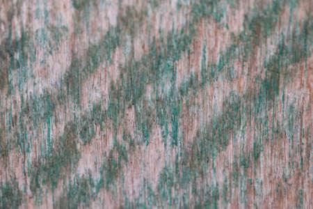 splintered: old paint on wood