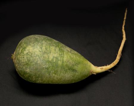 dikon: rábano verde sobre un fondo negro