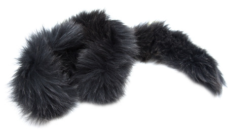 foreleg: black fur collar on a white background