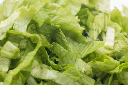 chopped lettuce leaves on a white background 写真素材