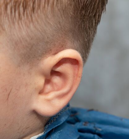 bright baby ear as background