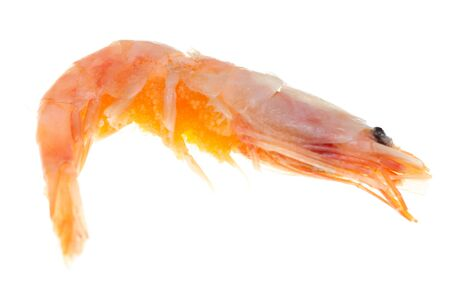 shrimp with caviar on a white background