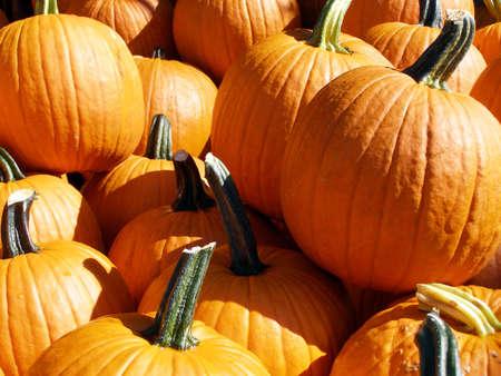 Pile of pumpkins on sale for Halloween.