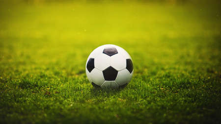 Classic soccer ball, typical black and white hexagon pattern, placed on the green grass stadium turf. Traditional football playing ball on natural lawn with copy space for announcement and advertising