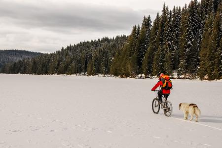 frozen lake: Mountain biker en herdershond op een bevroren meer in het dennenbos.