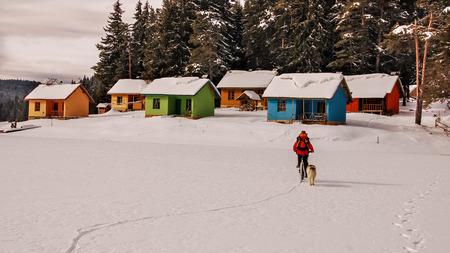 frozen lake: Kleurrijke huizen op een kust van een bevroren meer. Mountain biker en hond rijden op het meer. Stockfoto