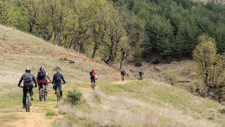 Group of mountain bikers in the forest. Stock Photo