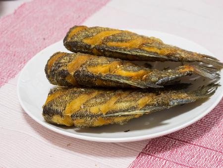 pectoralis: Dried Fried Snake Skin Gourami Fish, Thailand call Pla Salid, fish fry