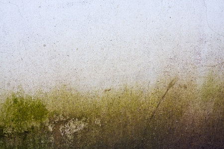 Abstract image of a old wall