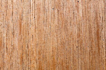 Wood Texture  Stock Photo - 16641756