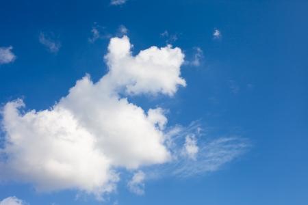 Cloud formation like blue terrier dog