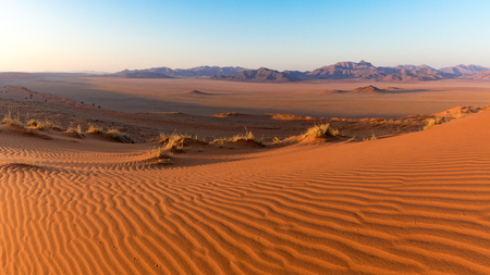 Landscape view of the Namib Rand Nature Reserve in Namibia, Africa Stok Fotoğraf