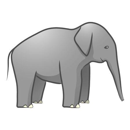 african grey: Elephant Illustration