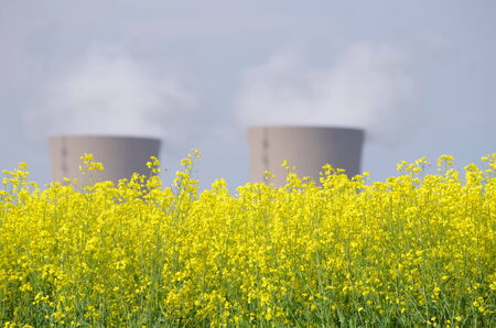 A rapeseed field in front of the nuclear power plant Grohnde photo
