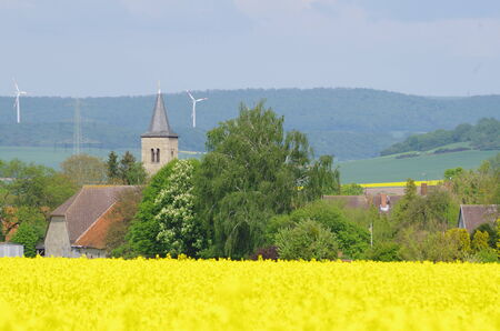 Rapeseed field in front of the place Grohnde photo
