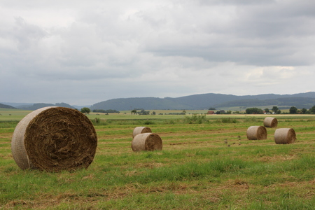 clench: Straw bale after harvest