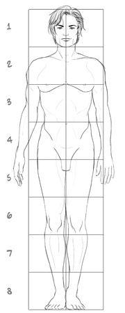 naked male: Male basic proportions