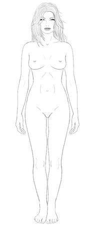 cuerpos desnudos: Mujeres proporciones básicas