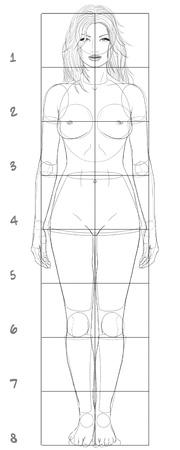 cuerpos desnudos: Mujer proporciones básicas