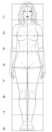 naked female body: Woman basic proportions Stock Photo