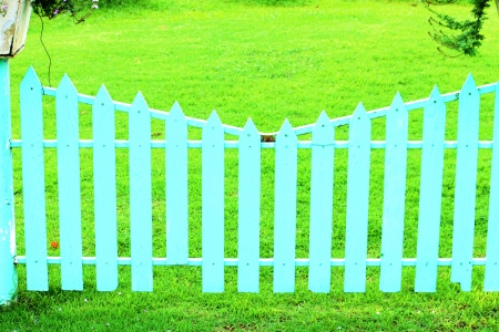 The blue wooden fence and green grass in the garden photo