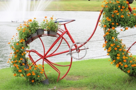 the pot of flowers on the bicycle in the garden photo