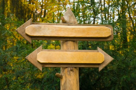 Sign in a forest showing arrows in two directions Stock Photo - 4473566