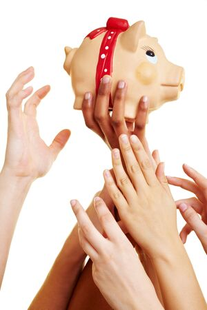 Many desperate hands reaching for a piggy bank Stock Photo - 7230595
