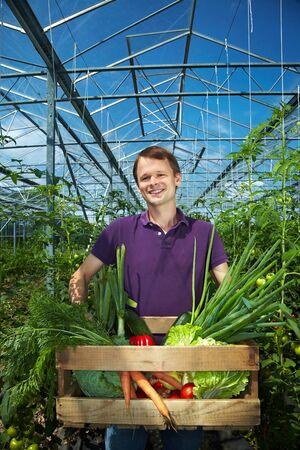 invernadero: Agricultor feliz con cuadro de vegetal en un invernadero  Foto de archivo