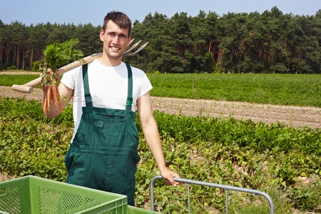 man field: Happy organic farmer with spade and carrots in the fields Stock Photo