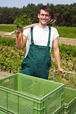 jornada de trabajo: Fama org�nico con zanahorias y pala sonriente en un campo