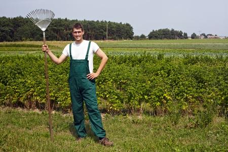 overol: agricultores org�nicos con rastrillo en frente de un campo de frambuesa