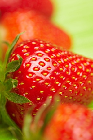pits: Closeup of strawberry seeds with other strawberries in a row