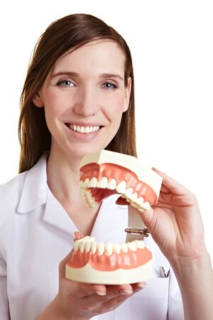 Happy female dentist with oversized model of human teeth Stock Photo - 9524464