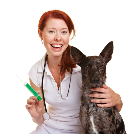 Happy female smiling veterinarian with dog and syringe photo