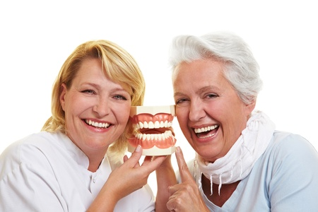 gums: Smiling dentist and senior woman with a teeth model Stock Photo