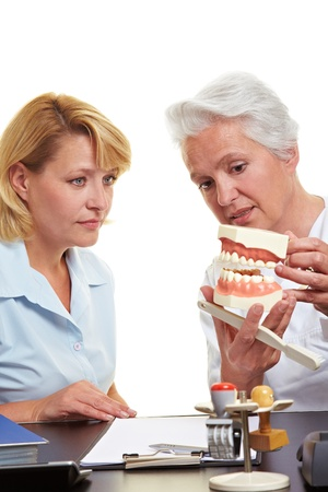 Dentist explaining treatment to woman on a teeth model Stock Photo - 10560394