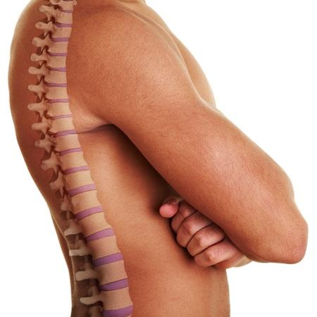 fysiotherapie: Zijaanzicht van de mens met 3D ruggengraat getoond Stockfoto