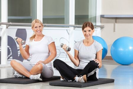 Two happy women doing dumbbell exercises on gym mats in fitness center Stock Photo - 12954283