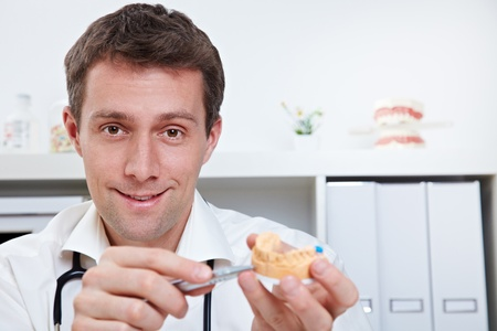 Smiling dentist in office showing dental cast photo
