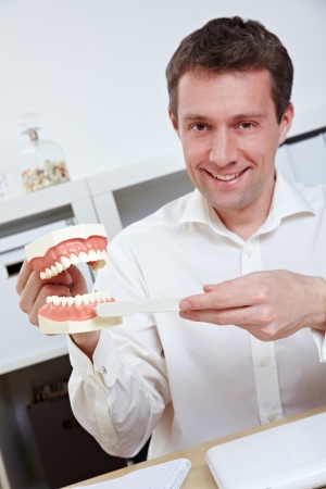 Smiling dentist in office offering tips for brushing teeth with toothbrush Stock Photo - 14334096
