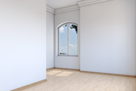 Empty room in luxury house with stucco and parquet floor Stock Photo - 17002263