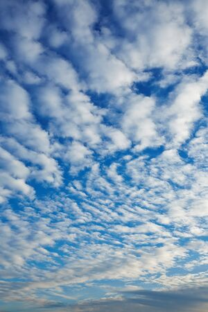 infinitely: Many small fluffy clouds in a blue sky